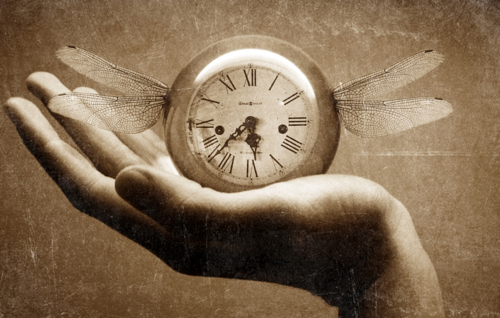 timpul-zboara-5894